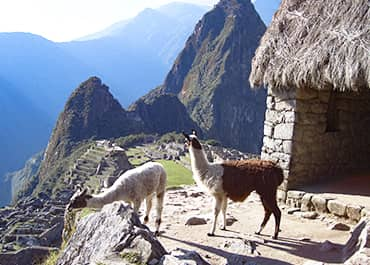 Machu Picchu Tour 4 Days